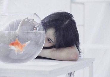Thiên Bình ước mình chỉ có bảy giây ký ức như loài cá