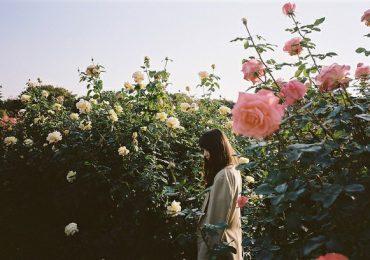 Hãy kiên nhẫn với tình yêu của một Bảo Bình, trầm lắng nhưng vô cùng sâu sắc